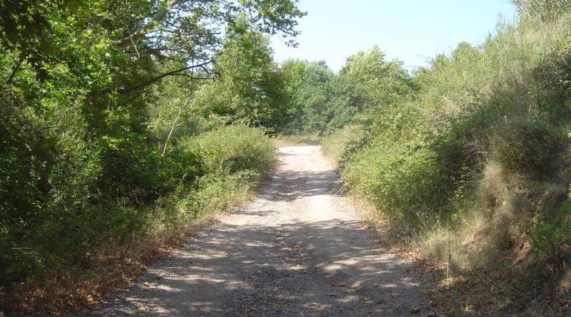 Ο ΣΠΑΠ ολοκλήρωσε την αποκατάσταση μεγάλου μέρους των δασικών δρόμων στη Βόρεια πλευρά του Πεντελικού