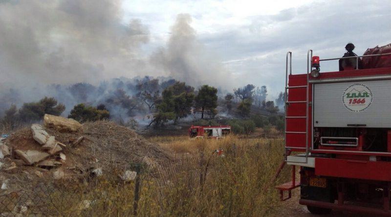 Έγκαιρη και αποτελεσματική η συνδρομή του ΣΠΑΠ με εθελοντές και οχήματα στην προσπάθεια κατάσβεσης πυρκαγιάς που εκδηλώθηκε στο Πικέρμι