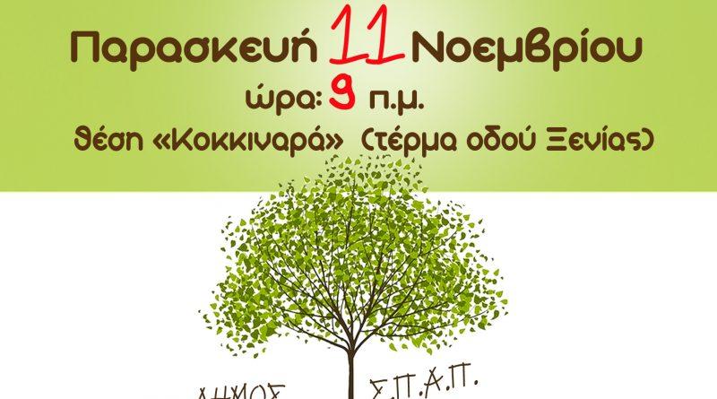 «Φυτεύω ένα δέντρο, συμβάλλω στην ελπίδα». Δράση Μαθητικής Αναδάσωσης:  Σ.Π.Α.Π., Δήμου Κηφισιάς και  ΣΚΑΪ