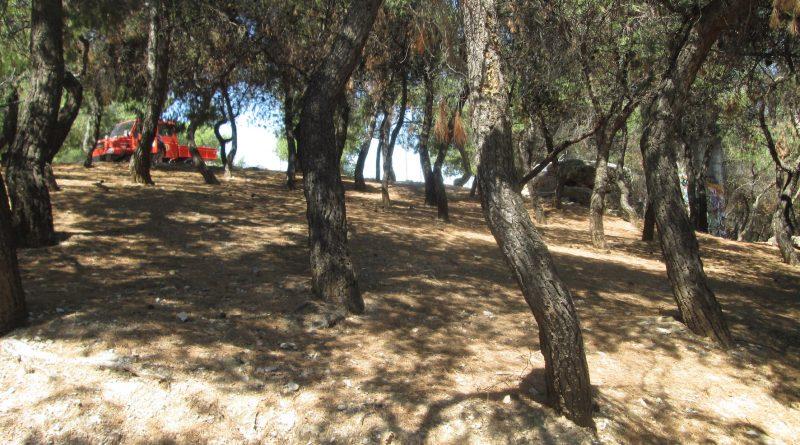 Σε Πεύκη και Γαλάτσι συνεχίζεται το πρόγραμμα καθαρισμών και αποψιλώσεων του Σ.Π.Α.Π. σε συνδρομή των Δήμων Μελών του