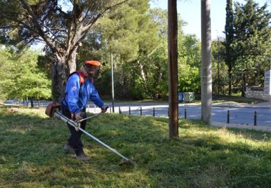 Ομάδα εθελοντών του Σ.Π.Α.Π. συνέδραμε τον Δήμο Πεντέλης σε εθελοντική δράση καθαρισμού στο άλσος πέριξ της εκκλησίας του Αγίου Νικολάου Πεντέλης
