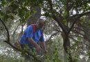 Ομάδα εθελοντών του Σ.Π.Α.Π. συνέδραμε στον καθαρισμό του λόφου του Προφήτη Ηλία Νέας Πεντέλης.