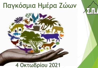 Το δικό του μήνυμα έδωσε ο Πρόεδρος του ΣΠΑΠ, Πρόεδρος της Πολιτικής Προστασίας και Αντιπρόεδρος του Εποπτικού Συμβουλίου της ΚΕΔΕ Βλάσσης Σιώμος για την Παγκόσμια Ημέρα των Ζώων