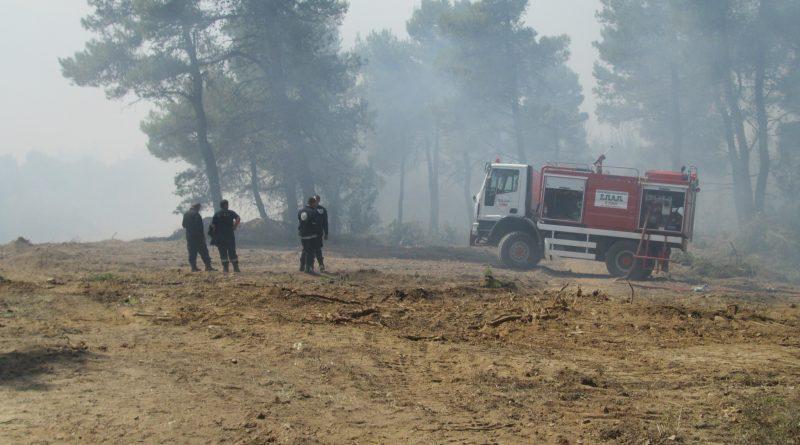 Ο ΣΠΑΠ για τρίτη συνεχή μέρα στα μέτωπα της πυρκαγιάς σε Κάλαμο, Καπανδρίτι και Πολυδένδρι