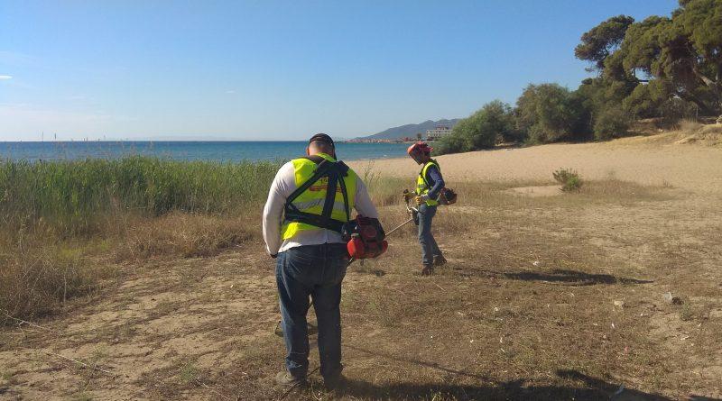 O Σ.Π.Α.Π. ολοκλήρωσε καθαρισμούς περιαστικών περιοχών στους  Δήμους Μαραθώνα, Σπάτων-Αρτέμιδας και Διονύσου