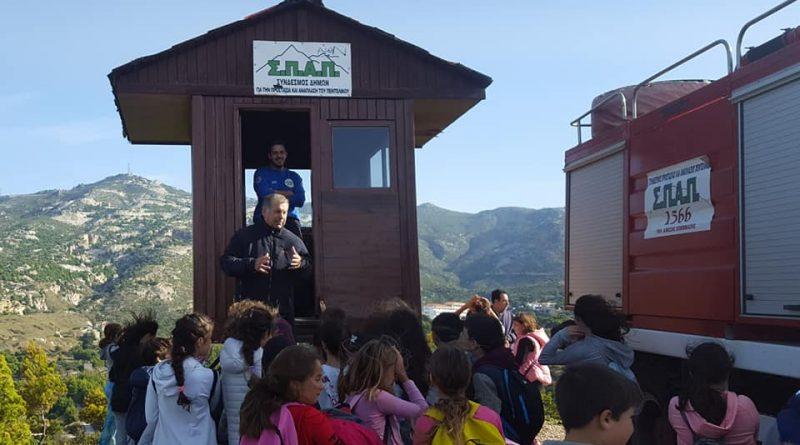 O Σ.Π.Α.Π. ξενάγησε μαθητές του Δημοτικού Σχολείου Νέας Πεντέλης σε περιβαλλοντική εκδρομή στον αναδασωμένο λόφο της Μικρής Καλλιθέας