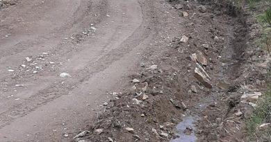 Ο Σύνδεσμος Δήμων για την Προστασία και Ανάπλαση του Πεντελικού (Σ.Π.Α.Π.)  ξεκίνησε εργασίες συντήρησης και αποκατάστασης δασικών δρόμων στο Πεντελικό.